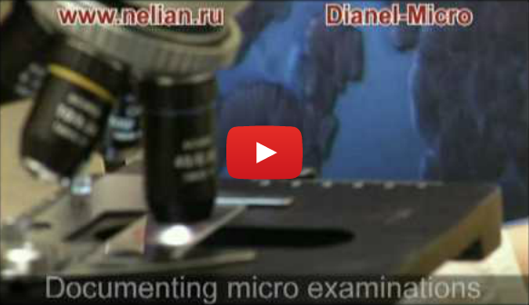 Dianel-Micro - digital microscopes software for visualization of live blood analysis - hemoscaning